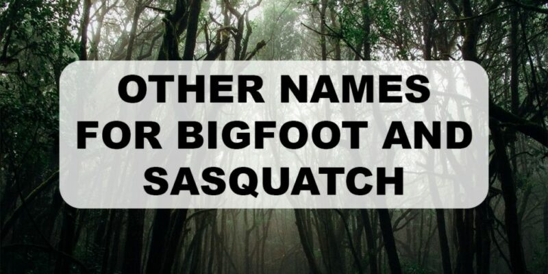 Other names for Bigfoot